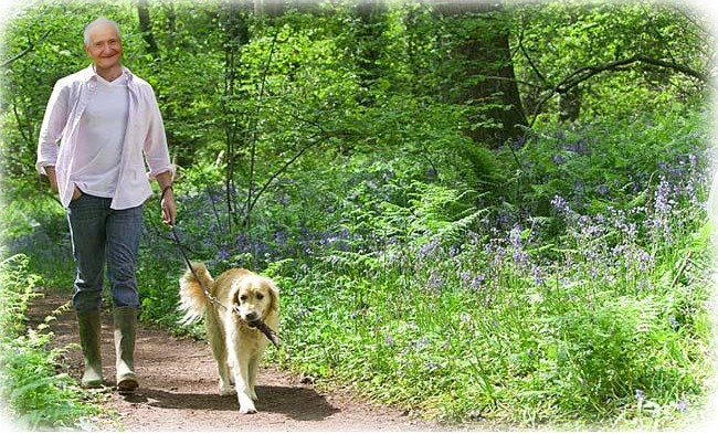 Man Walking Dog : The old man and his dog playing in world game