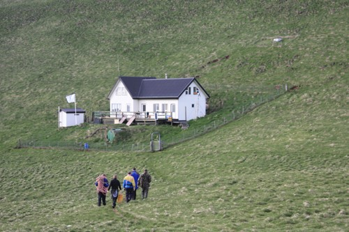 Elliðaey, Iceland (2/3)