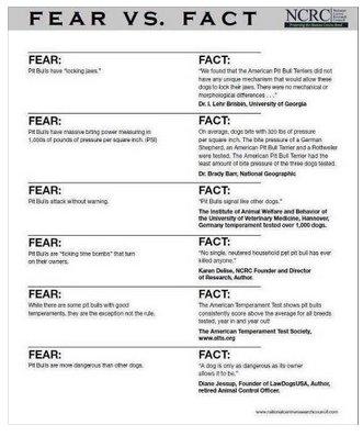FearFact