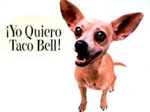 01commercial-animals-taco-bell1