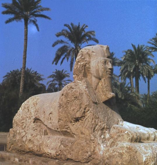 Memphis Sphinx
