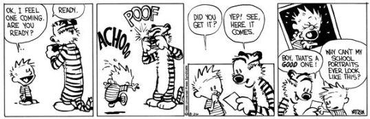 Calvin Sneeze
