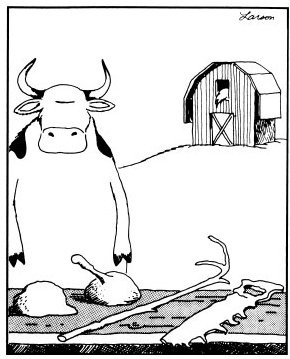 Cow Tools