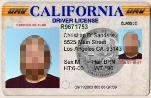 Sanders Driver License