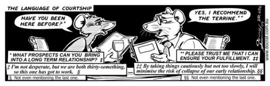 Doc Rat - Courtship