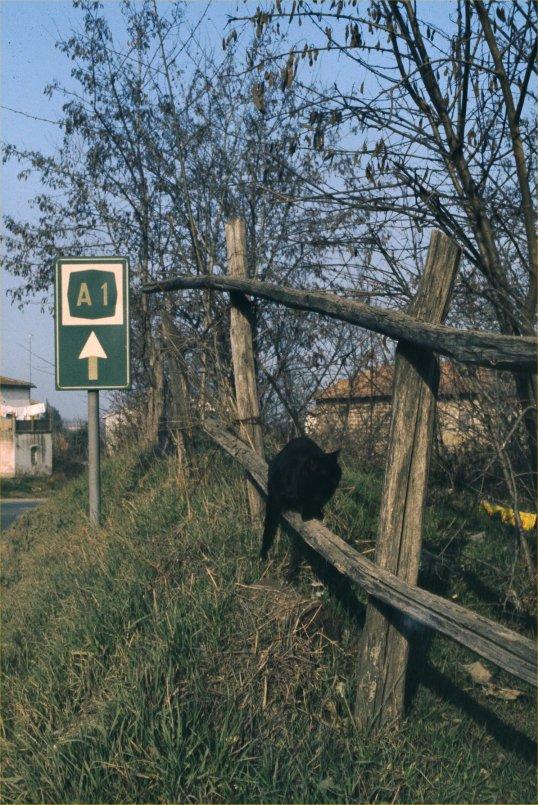 Near Udine, Italy