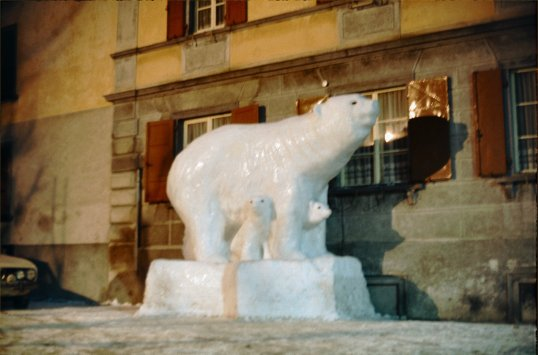 Romansch Area - Polar Bear