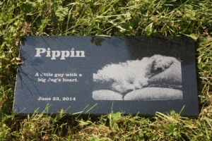 pippin-memorial_th
