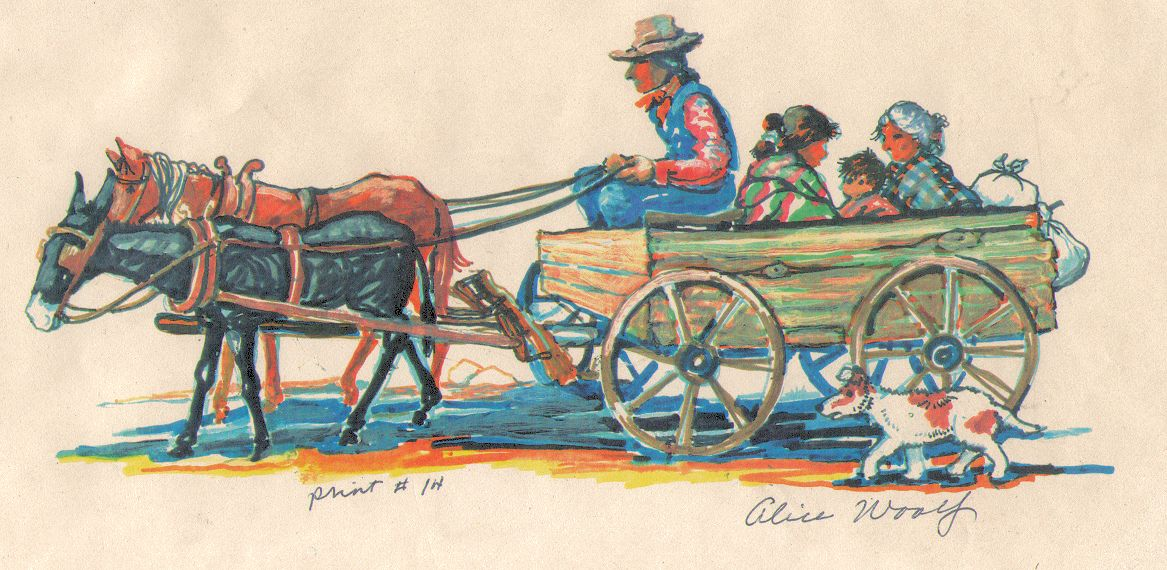 Alice Woolfe Print 1