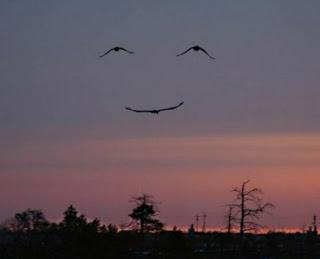 smileinthesky