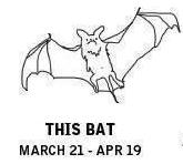this bat