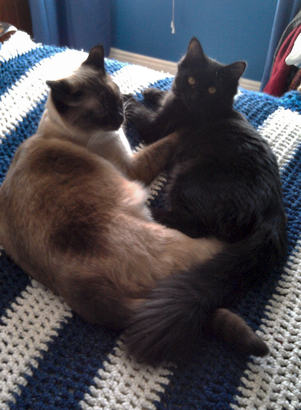 20120106 Sensei and Tessa